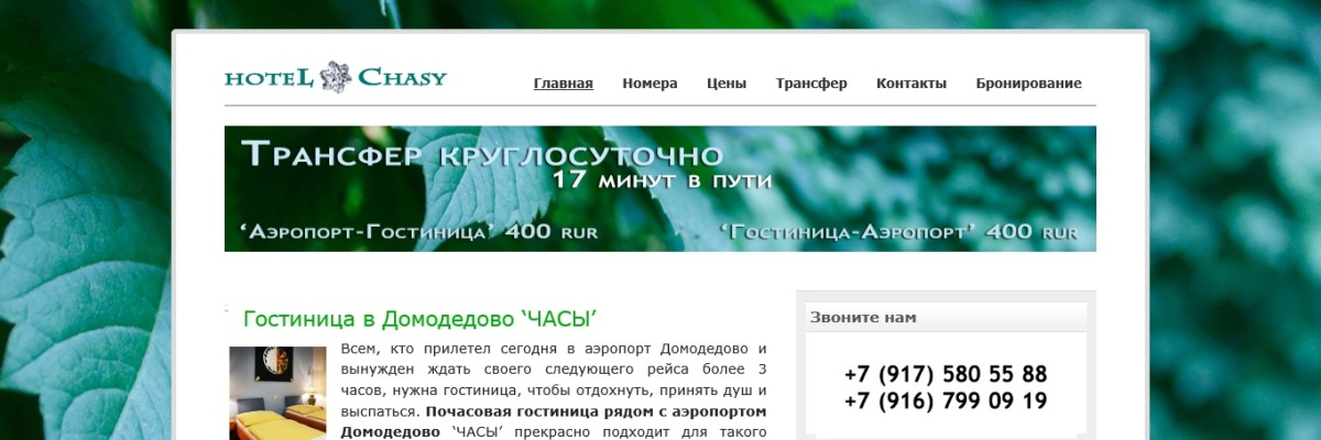 Разработка и создание сайта гостиницы и отеля в Домодедово