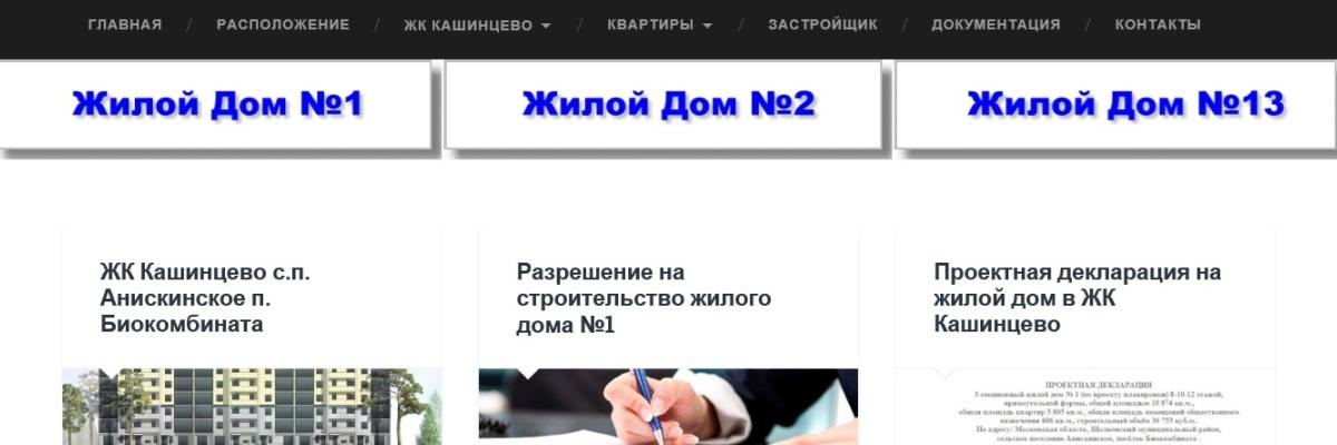 Разработка сайта Жилого комплекса Кашинцево
